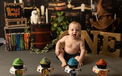 Harry Potter House Sorting Cake Smash | Minneapolis MN