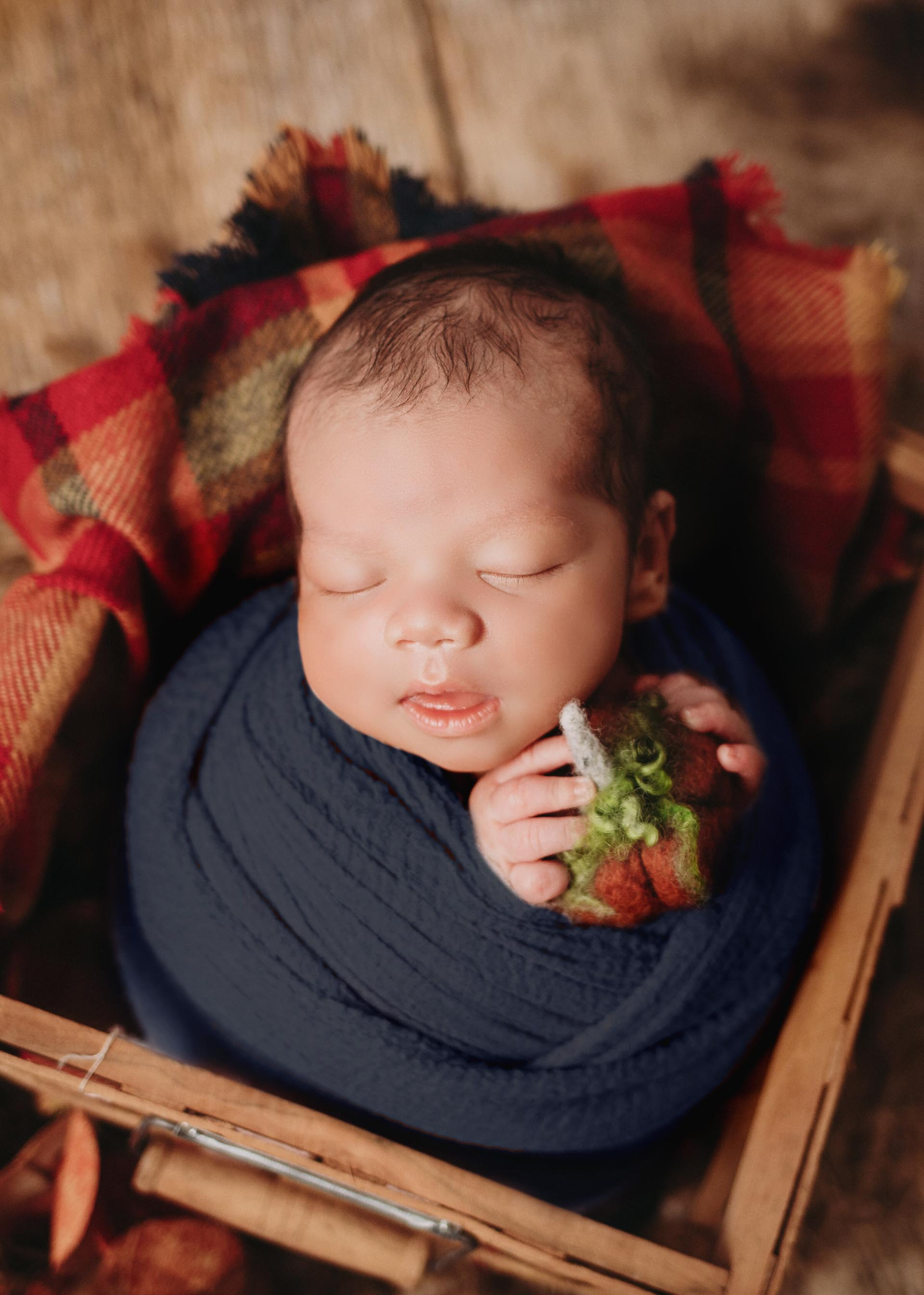 baby boy in plaid blanket basket with pumpkin newborn photography session in minneapolis mn